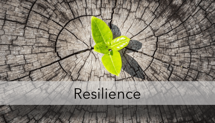 Building Resilience in Yourself and Others
